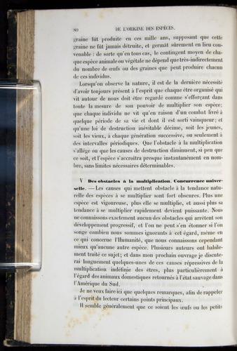 Image of Darwin-F656-1866-00080