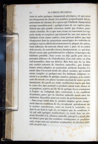 Image of Darwin-F656-1866-00096