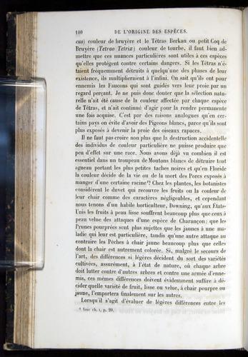 Image of Darwin-F656-1866-00100