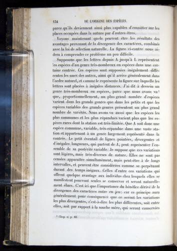 Image of Darwin-F656-1866-00134