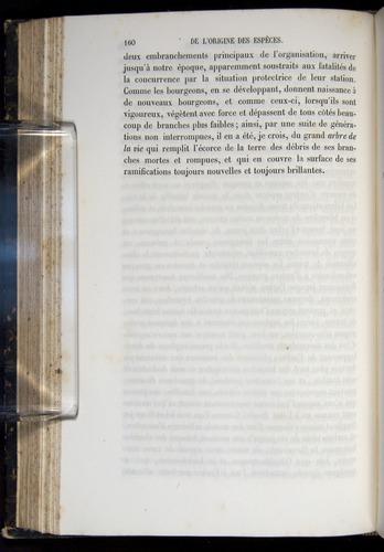 Image of Darwin-F656-1866-00160