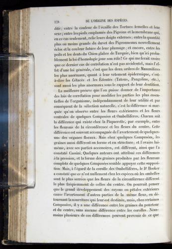 Image of Darwin-F656-1866-00178