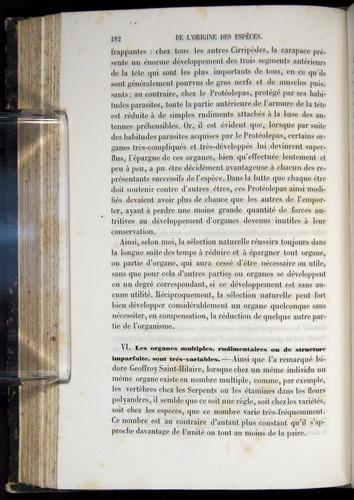 Image of Darwin-F656-1866-00182