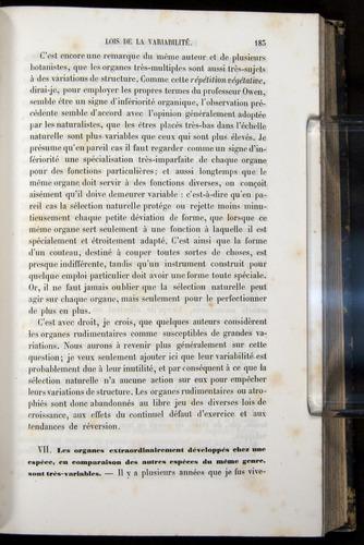 Image of Darwin-F656-1866-00183