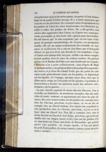 Image of Darwin-F656-1866-00198
