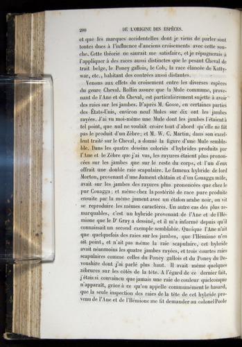 Image of Darwin-F656-1866-00200