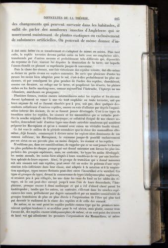 Image of Darwin-F656-1866-00223
