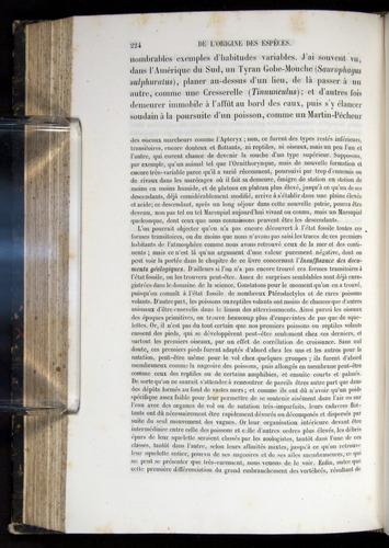 Image of Darwin-F656-1866-00224