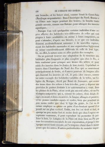 Image of Darwin-F656-1866-00226