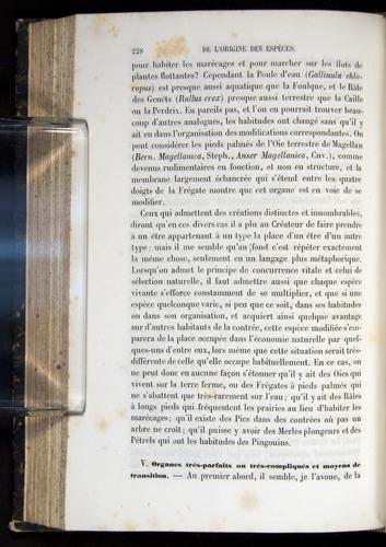 Image of Darwin-F656-1866-00228