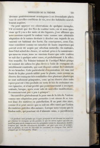 Image of Darwin-F656-1866-00245