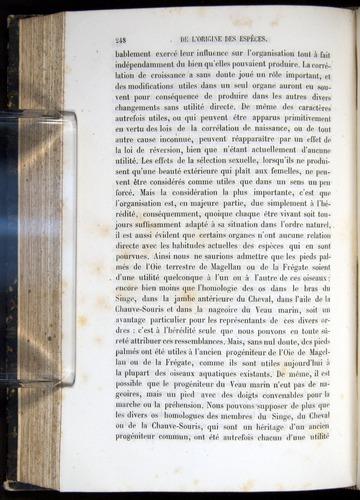 Image of Darwin-F656-1866-00248