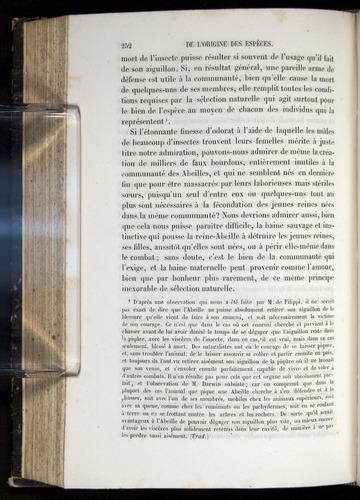Image of Darwin-F656-1866-00252