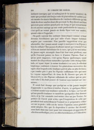 Image of Darwin-F656-1866-00266