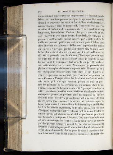 Image of Darwin-F656-1866-00270
