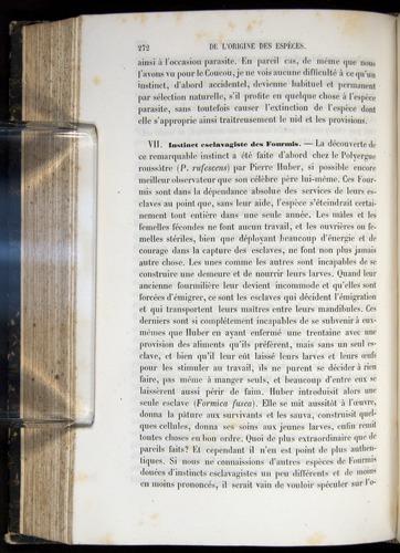 Image of Darwin-F656-1866-00272