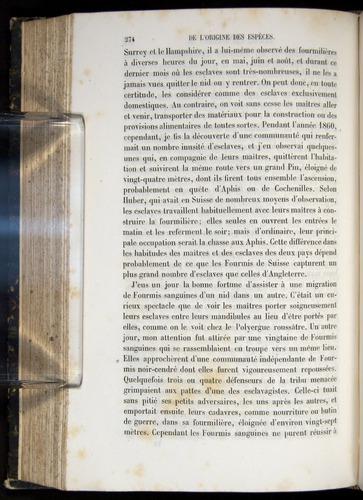 Image of Darwin-F656-1866-00274