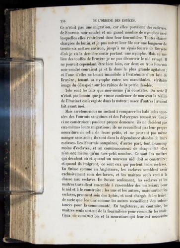 Image of Darwin-F656-1866-00276