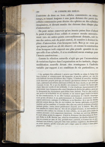 Image of Darwin-F656-1866-00288