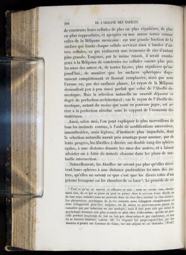 Image of Darwin-F656-1866-00290