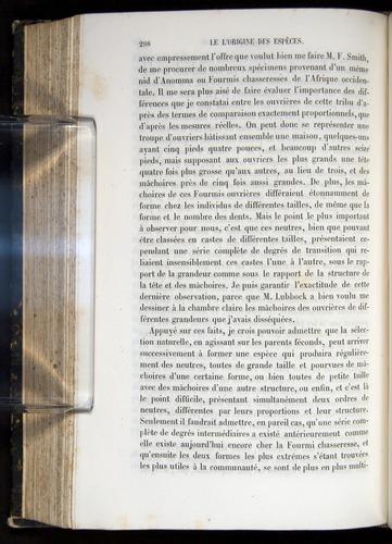 Image of Darwin-F656-1866-00298