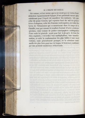 Image of Darwin-F656-1866-00302