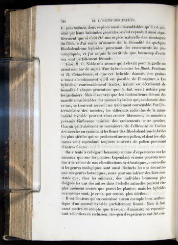 Image of Darwin-F656-1866-00310