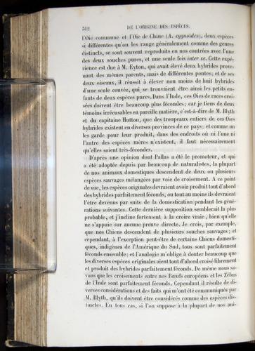 Image of Darwin-F656-1866-00312