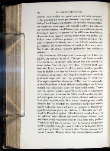 Image of Darwin-F656-1866-00316