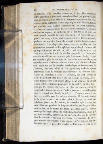 Image of Darwin-F656-1866-00328