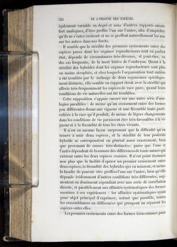 Image of Darwin-F656-1866-00336