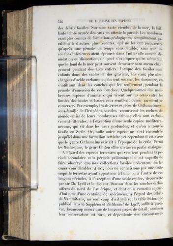 Image of Darwin-F656-1866-00346