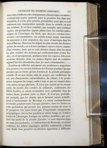 Image of Darwin-F656-1866-00357