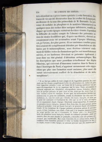 Image of Darwin-F656-1866-00374