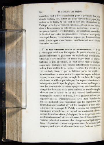 Image of Darwin-F656-1866-00380