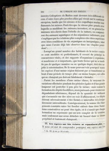 Image of Darwin-F656-1866-00382