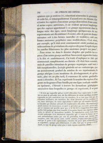Image of Darwin-F656-1866-00384