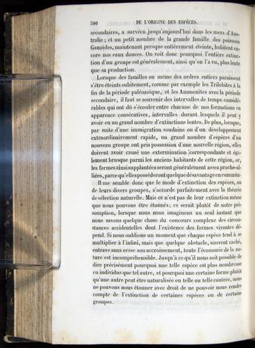Image of Darwin-F656-1866-00390