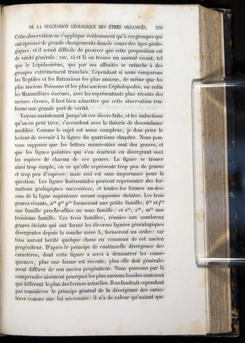 Image of Darwin-F656-1866-00399