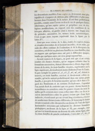 Image of Darwin-F656-1866-00400