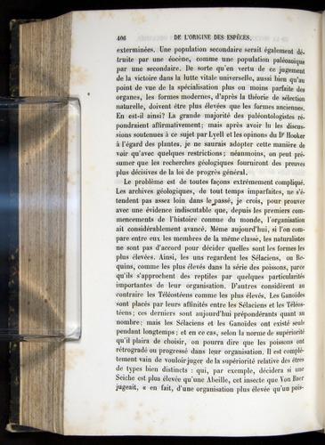 Image of Darwin-F656-1866-00406
