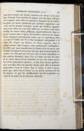 Image of Darwin-F656-1866-00501