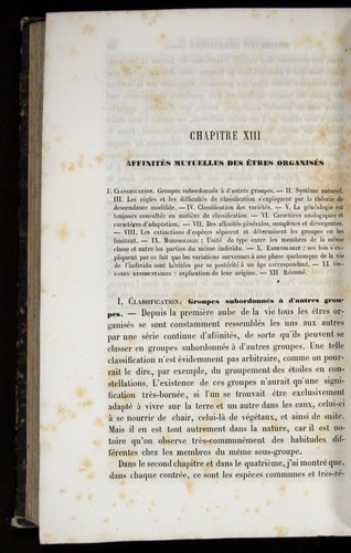 Image of Darwin-F656-1866-00502