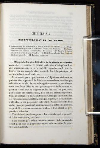 Image of Darwin-F656-1866-00555