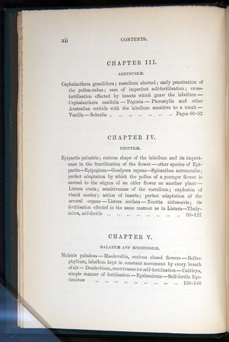 Image of Darwin-F803-1882-000-z12