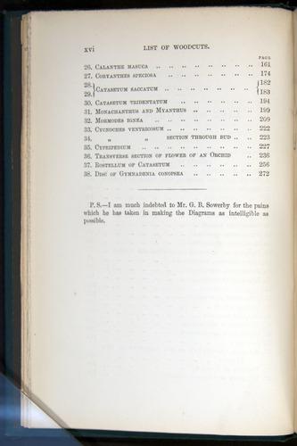 Image of Darwin-F803-1882-000-z16