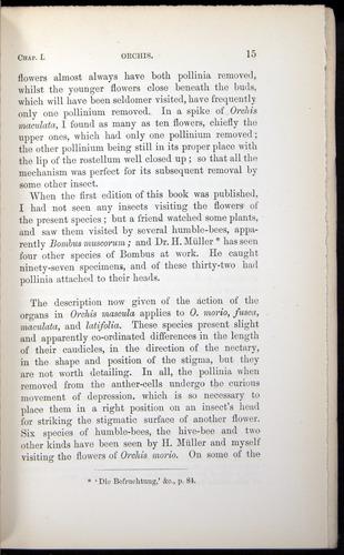 Image of Darwin-F803-1882-015