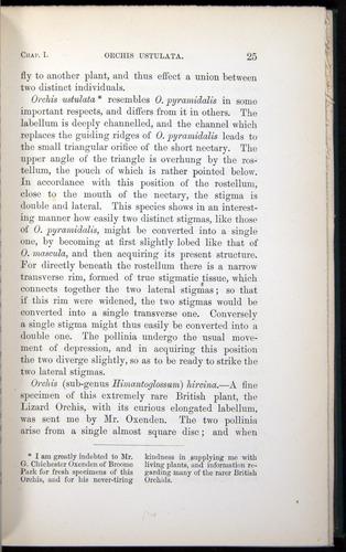 Image of Darwin-F803-1882-025
