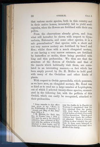 Image of Darwin-F803-1882-030