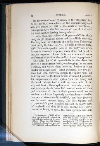 Image of Darwin-F803-1882-034
